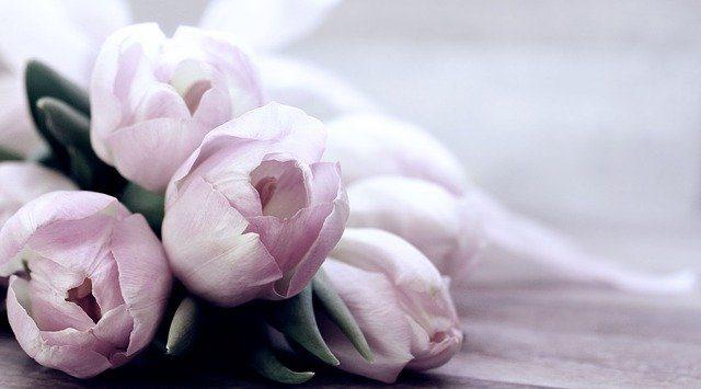 ¿Cómo crear un ramo de flores personal para regalo?